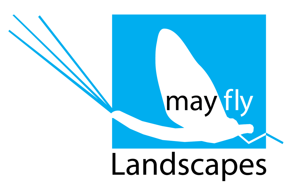 Mayfly Landscapes