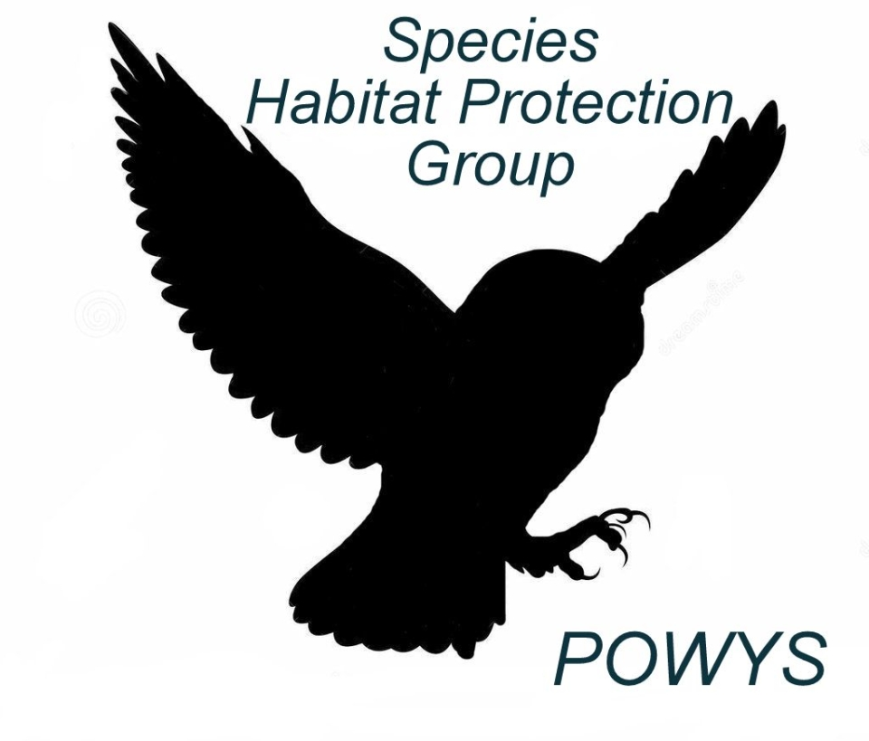 Species Habitat Protection Group in Powys, Wales